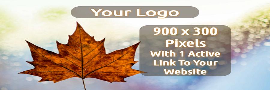 Your Logo 900 x 300 En (Actual Size)