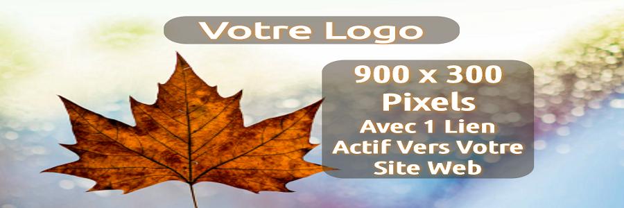 Your Logo 900 x 300 Fr (Actual Size)